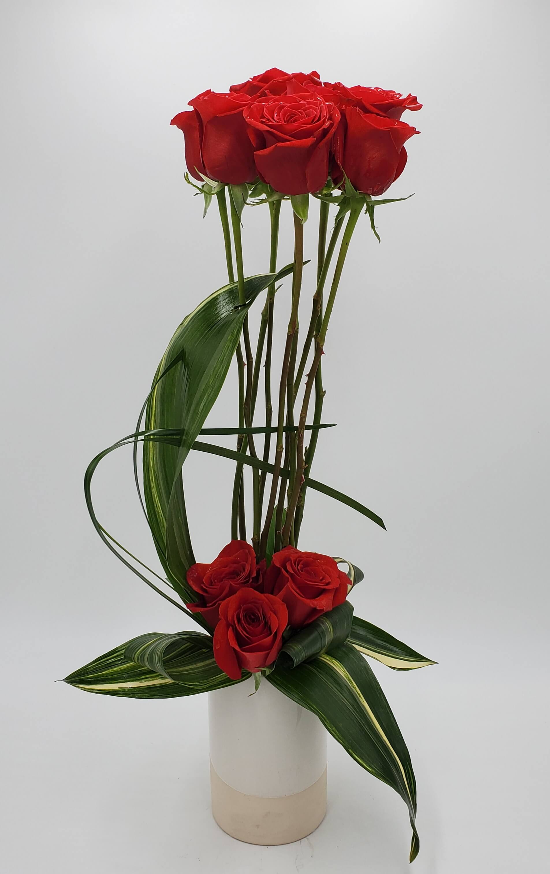 Modern Red rose design